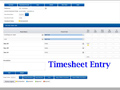 Consolidated Timesheet Report